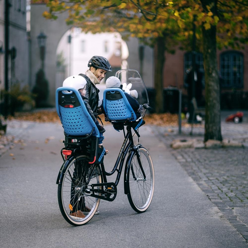 Baby Travel Gear Thule Yepp Mini Child Bike Seat