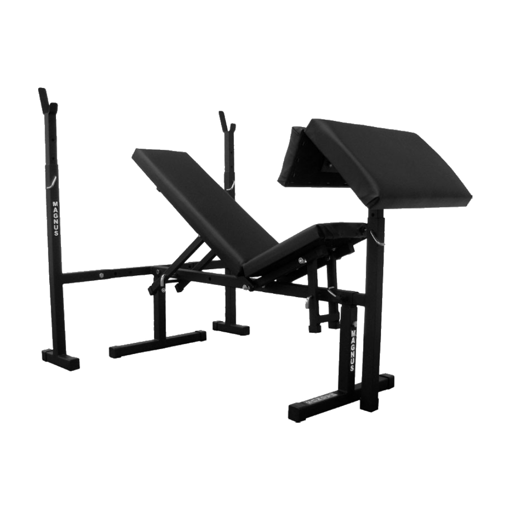 Workout Bench MAGNUS CLASSIC MC-L003 - inSPORTline