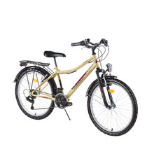 Junior Bicycle DHS Travel 2431 24ʺ – 2016 Offer - Ivory