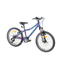Girls' Mountain Bike Devron Riddle LH0.2 20'' - 2017 - Deep Purple