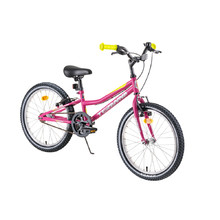 "Children's Bike DHS Teranna 2004 20"" – 2019 - Pink"