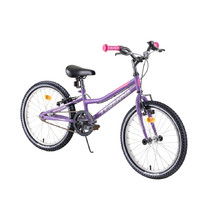 "Children's Bike DHS Teranna 2004 20"" – 2019 - Purple"