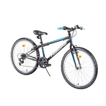 "Junior Bike DHS Teranna 2421 24"" – 2019"
