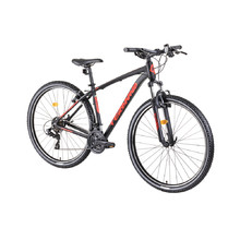 "Mountain Bike DHS Teranna 2923 29"" – 2019 - Black"