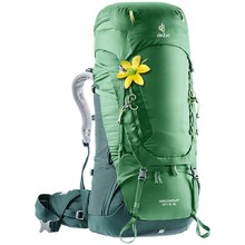 Expedition Backpack DEUTER Aircontact 60 + 10 SL - Leaf-Forest
