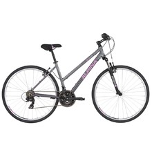 Women's Cross Bike ALPINA ECO LC10 – 2019 - Grey