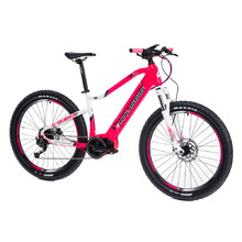 Mountain E-Bike Crussis e-Guera 7.6-M – 2021