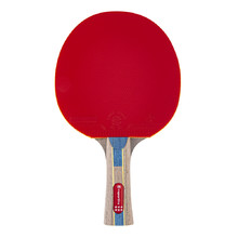 Table Tennis Paddle inSPORTline Shootfair S6