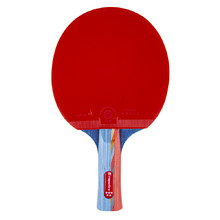 Table Tennis Paddle inSPORTline Shootfair S5