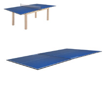 Ping Pong Table Top inSPORTline Sunny Top