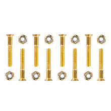 Mounting Screws WORKER 5x35mm - Gold
