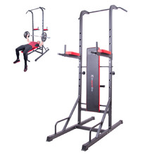 Multi-Purpose Dip Station inSPORTline Power Tower X150