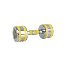 Chrome Dumbbell inSPORTline Yellsteel 6 kg