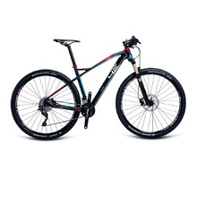 "Mountain Bike 4EVER Inexxis 3 29"" – 2017"