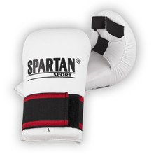 Spartan karate Boxing Gloves