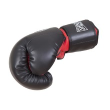 Boxing Gloves Shindo Sport