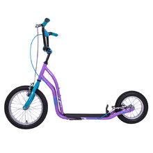 Kick Scooter inSPORTline Suter SE Purple-Blue