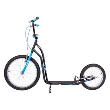 Kick Scooter inSPORTline Drogo SE Black-Blue