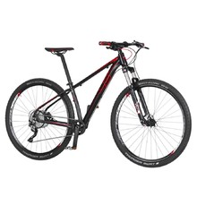 "Junior Bike 4EVER Tallent 29"" – 2019"
