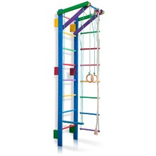 Children's Climbing Frame inSPORTline Teenager 2