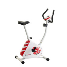 Exercise Bike inSPORTline Kalistic - White