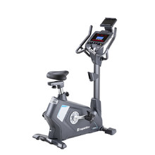 Exercise Bike inSPORTline Moriston UB