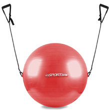 55cm Gymnastic Ball with Grips - Red