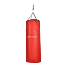 inSPORTline Mike Punching Bag