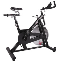 Spinning Bike inSPORTline Omegus - Black