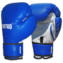Boxing Gloves SportKO PD2 - Blue