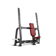 Workout Bench Marbo Sport MP-L209