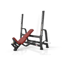 Workout Bench Marbo Sport MP-L207