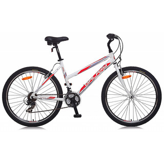 Lady's moutain bike Galaxy Erida Lady - model 2014