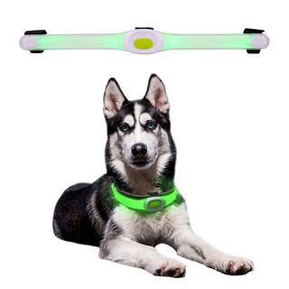 Dog Collar LED Light Petsaber Maxi