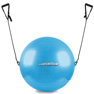 55cm Gymnastic Ball with Grips