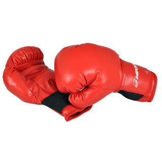 InSPORTline Boxing Gloves