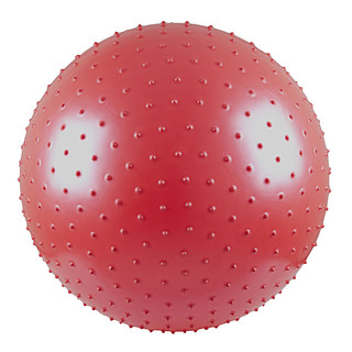 55cm Gymnastic and Massage Ball - Red