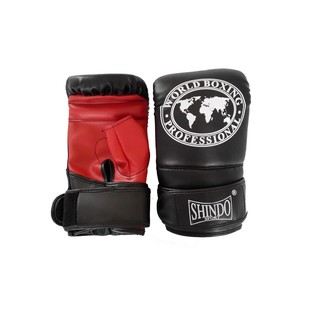 Practice Boxing Gloves with Long Zipper Shindo Sport