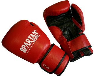 SPARTAN Boxing Gloves